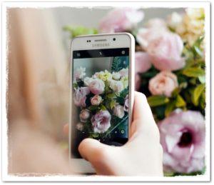 Съёмка цветов на смартфон Samsung